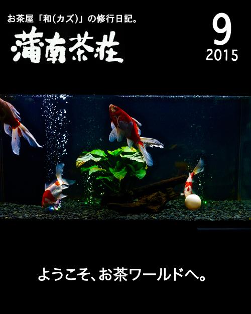 BLOG表紙_201509.jpg