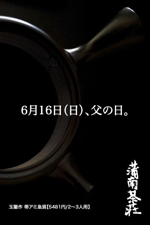 2013新茶紫玉袋5 のコピーのコピー.jpg